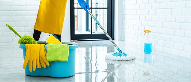 Professional Cleaning Services in CA