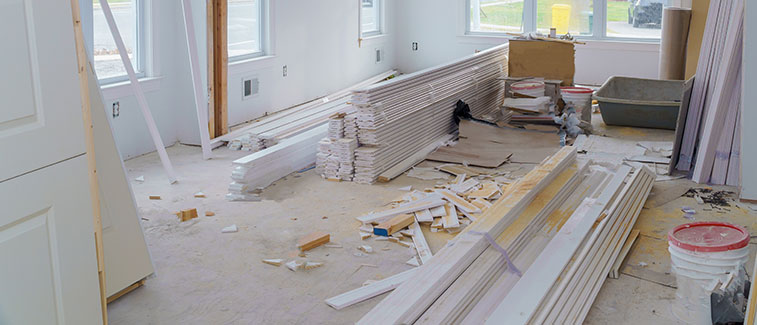 Professional Remodeling Services in CA
